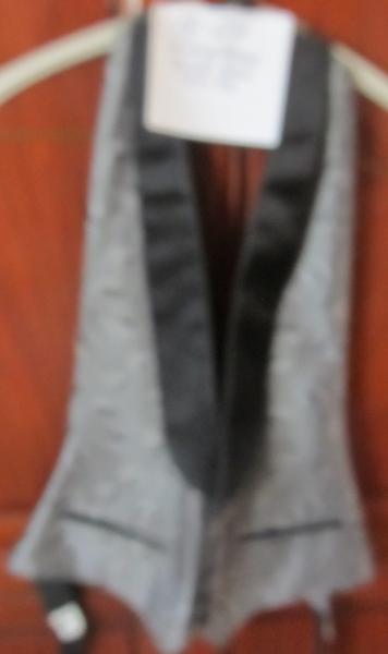 18-24 Silverslingback vest